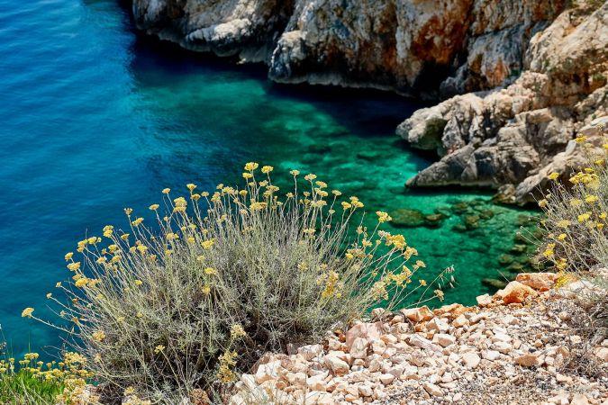 Insel Cres, Kroatien, Martin und Ulrike Sinzinger: Naturerlebnis Wanderreisen